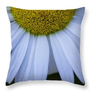 Hemisphere 5x7 Throw Pillow