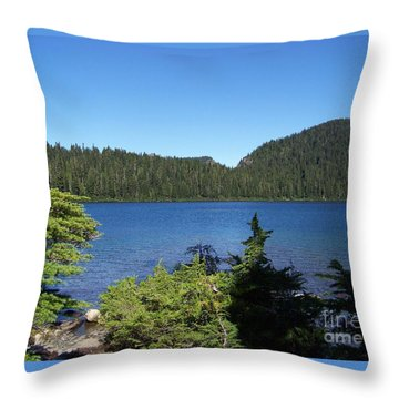 Throw Pillow featuring the photograph Hemlock On The Shore by Charles Robinson