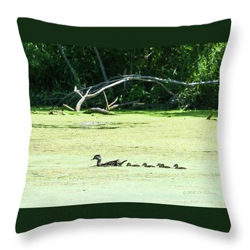 Hen And Baby Wood Ducks Throw Pillow by Edward Peterson