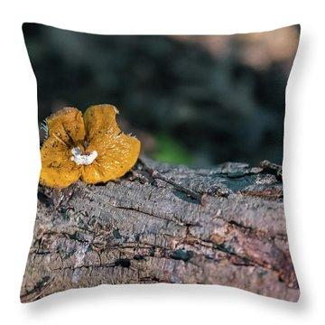 Hen Of The Woods Mushroom Throw Pillow