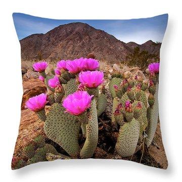 Henderson Canyon Beavertail Throw Pillow