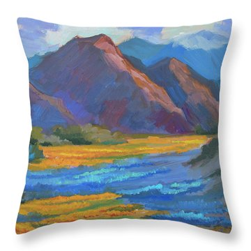 Throw Pillow featuring the painting Henderson Canyon Borrego Springs by Diane McClary