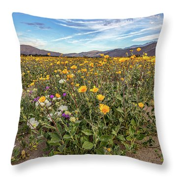 Throw Pillow featuring the photograph Henderson Canyon Super Bloom by Peter Tellone