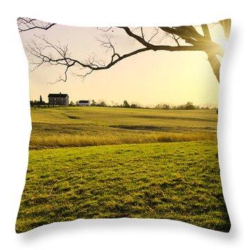Henry Hill Throw Pillow