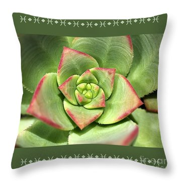 Hens And Chicks Succulent And Design Throw Pillow