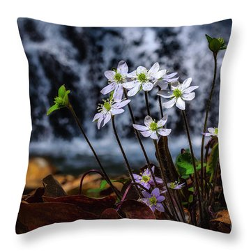 Throw Pillow featuring the photograph Hepatica And Waterfall by Thomas R Fletcher
