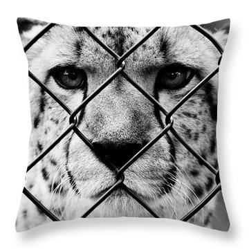 Her Teeth She Would Kill  Throw Pillow