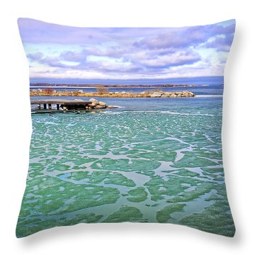 Heralds Of Spring Throw Pillow by Charline Xia