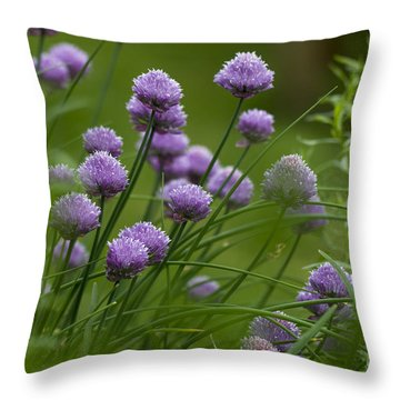 Herb Garden. Throw Pillow by Clare Bambers