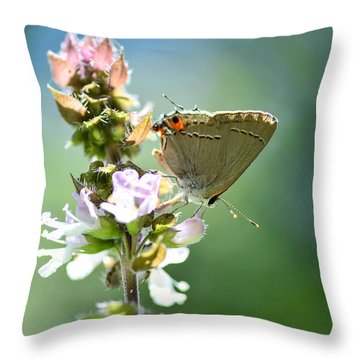 Herb Visitor Throw Pillow by Debbie Green