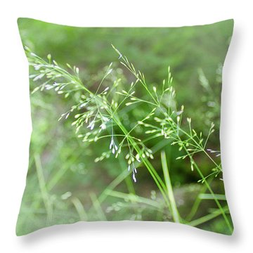 Herbs Close Up Throw Pillow