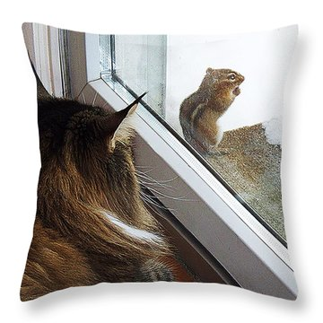 Throw Pillow featuring the photograph Cat And Mouse by Roger Bester