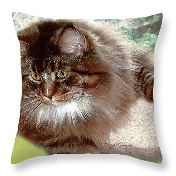Throw Pillow featuring the photograph Hercules The Beautiful. by Roger Bester