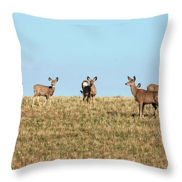 Herd Of Deer Throw Pillow