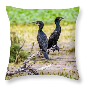 Here And There  - Cormorant Pair  Throw Pillow