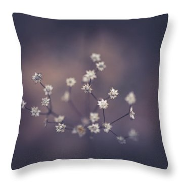 Throw Pillow featuring the photograph Here And There by Shane Holsclaw