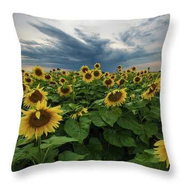 Here Comes The Sun Throw Pillow by Aaron J Groen