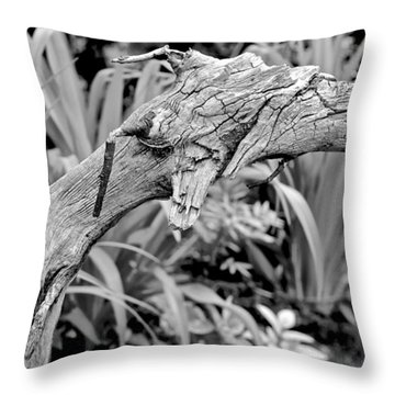 Here There Be Dragons Throw Pillow