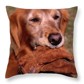 Here To Serve Throw Pillow by Skip Willits