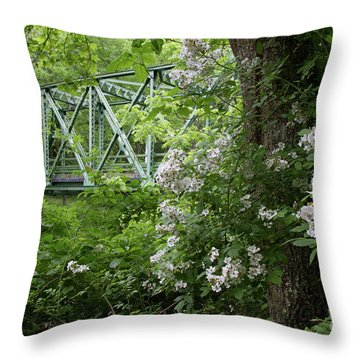 Throw Pillow featuring the photograph Hereford Wildlands by Chris Scroggins
