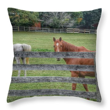 1007 - Here's Looking At You Throw Pillow