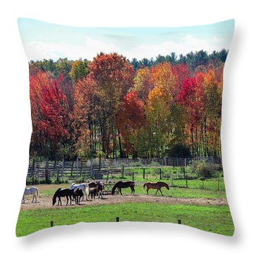 Heritage Farm In Easthampton, Ma Throw Pillow