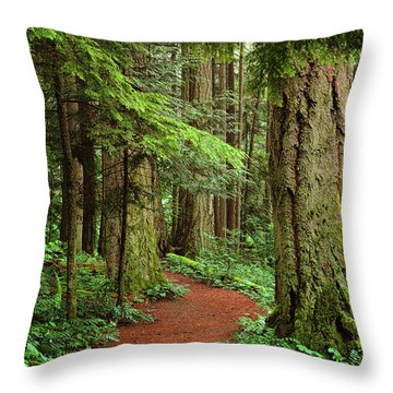 Heritage Forest 2 Throw Pillow by Randy Hall