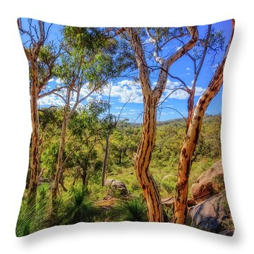 Heritage View, John Forest National Park Throw Pillow by Dave Catley