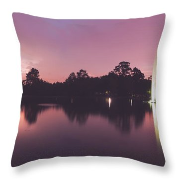 Throw Pillow featuring the photograph Hermann Park by Ray Devlin
