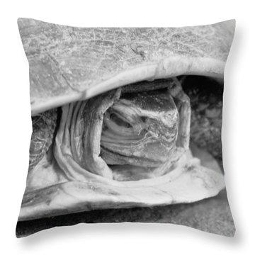 Hermes Throw Pillow