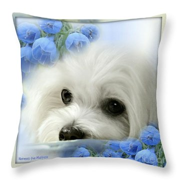 Hermes In Blue Throw Pillow