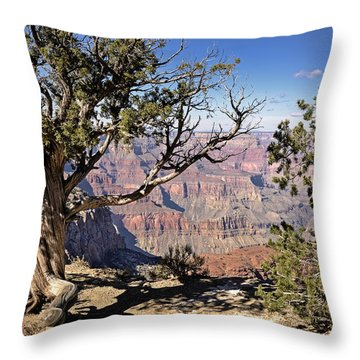 Hermits Throw Pillow