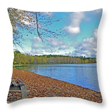 Fall Picnic In Maine Throw Pillow