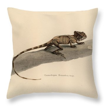 Throw Pillow featuring the drawing Hernandez's Helmeted Basilisk, Corytophanes Hernandesii by Friedrich August Schmidt