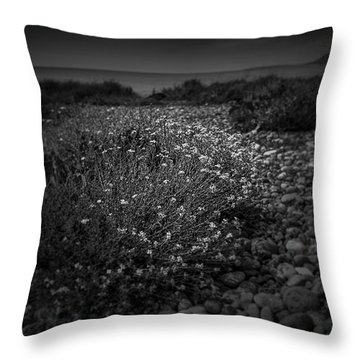 Hernsea Bay And Black Combe Throw Pillow