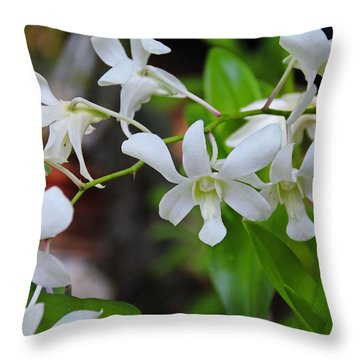 Throw Pillow featuring the photograph Hero Of My Heart by Michiale Schneider