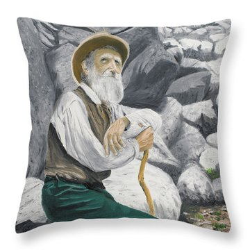 Throw Pillow featuring the painting Hero Of The Land by Kevin Daly