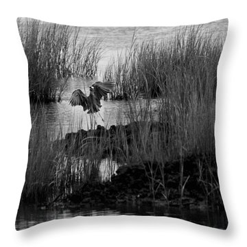 Heron And Grass In B/w Throw Pillow