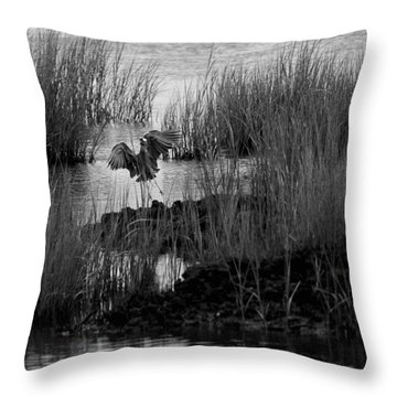 Throw Pillow featuring the photograph Heron And Grass In B/w by William Selander