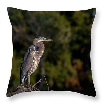 Heron At Sunrise Throw Pillow