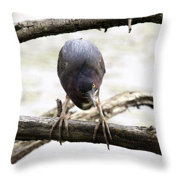 Heron Attitude Throw Pillow