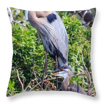 Heron Babies Throw Pillow
