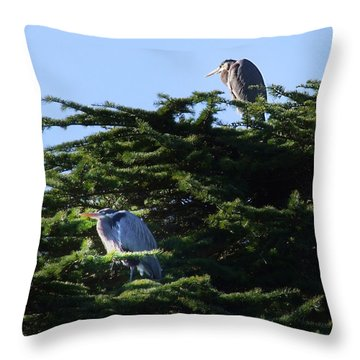 Heron Family At Rest Throw Pillow