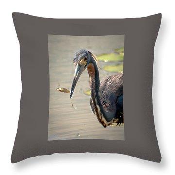 Heron Fishing Throw Pillow by Allen Biedrzycki
