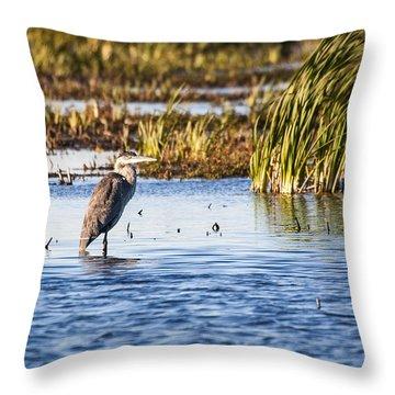 Heron - Horicon Marsh - Wisconsin Throw Pillow