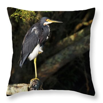 Heron In The Light Throw Pillow