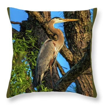 Heron In The Pine Tree Throw Pillow