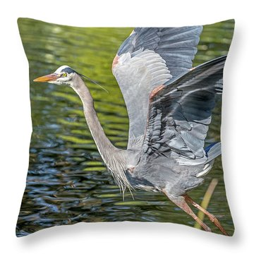 Heron Liftoff Throw Pillow
