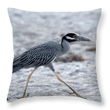 Yellow-crowned Night Heron On A Mission Throw Pillow