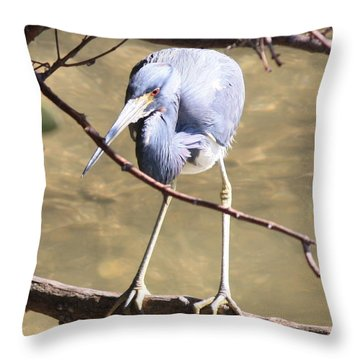 Heron On Branch Throw Pillow